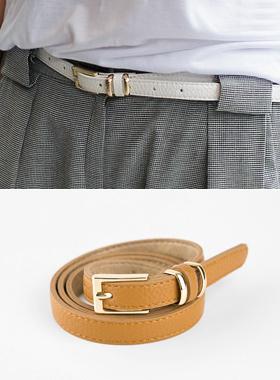 Eddie Color Belt