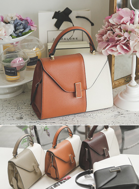 Sepia color combination small tote