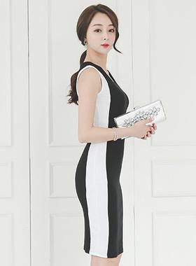 Side Lining Slim Dress