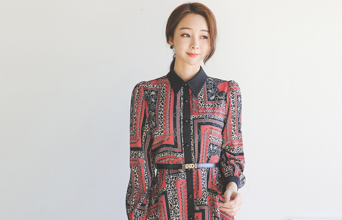 Antique Patterns Belt Flare Shirt Dress