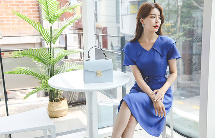 Wing Sleeves V-neck DRing Belted Flared Dress